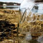 Jar grass 3 copy