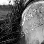 jar grass 1 copy