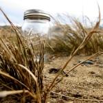 jar grass 2 copy