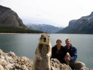 squirrel-photobomb